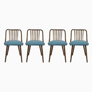 Chaises de Salle à Manger par Antonin Suman pour Ton, 1960s, Set de 4