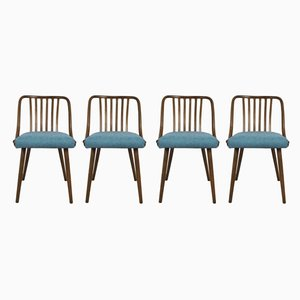 Esszimmerstühle von Antonin Suman für Ton, 1960er, Set of 4
