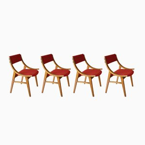 Mid-Century Jumper Dining Chairs from Zamoyskie Furniture Factory, Set of 4