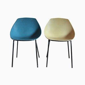 Seashell Stühle von Pierre Guariche für Meurop, 1950er