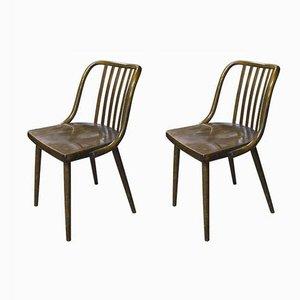 Chaises Vintage en Bois Courbé de TON, Set de 2