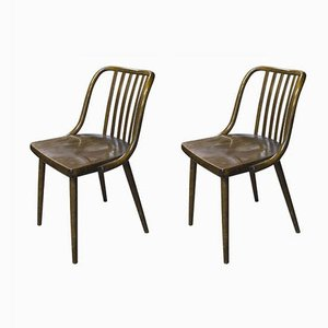 Vintage Bentwood Chairs from TON, Set of 2