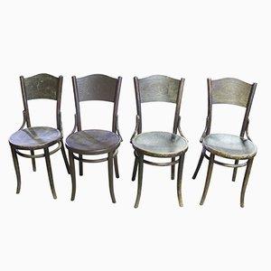 Mundus Stühle von Thonet, 1920er, 4er Set