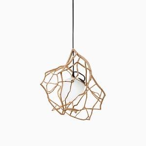 Luminaire Sculpté Planck par Jérôme Pereira