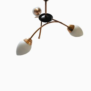 French Brass & Frosted Glass Chandelier, 1950s