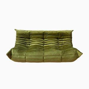 Grünes Togo 3-Sitzer Sofa aus Samt von Michel Ducaroy für Ligne Roset, 1970er