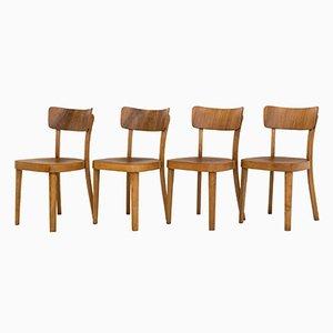 Moderne Esszimmerstühle von Thonet, 1953, 4er Set