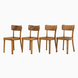 Modernist Dining Chairs from Thonet, 1953, Set of 4