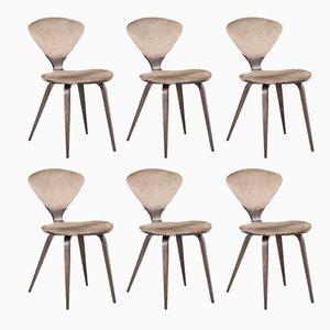 Esszimmerstühle aus Holz und Rindsleder von Norman Cherner für Plycraft, 1960er, 6er Set