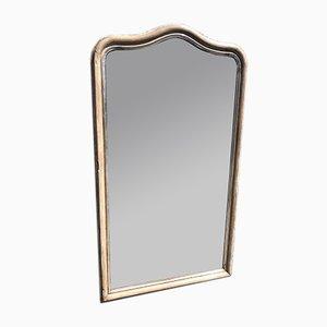 Französischer Spiegel aus geschnitztem Holz & Gesso, 19. Jh