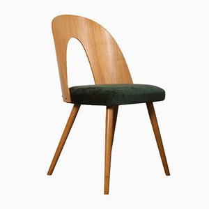 Ash Dining Chair by Antonín Šuman for Tatra, 1950s