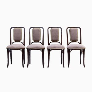 Antique Art Nouveau Bentwood Dining Chairs from Gebrüder Thonet Vienna GmbH, Set of 4