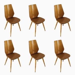Esszimmerstühle aus Kunstleder & Mahagoni von Max Bill für Baumann, 1960er, 6er Set
