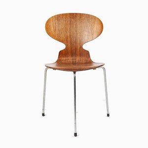 Silla de comedor modelo 3100 danesa de palisandro de Arne Jacobsen para Fritz Hansen, años 50