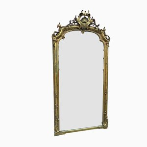 Large 19th Century French Carved Wood & Gesso Mirror