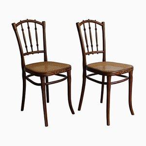 Sedie da pranzo Art Nouveau di Thonet, anni '10, set di 2