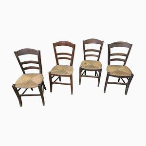 Chaises Rustiques Vintage, Set de 4