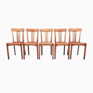 Industrielle Mid-Century Esszimmerstühle aus Eichenholz, 1950er, 5er Set