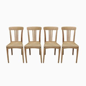 Beech Bistro Chairs from Stella, 1950s, Set of 4