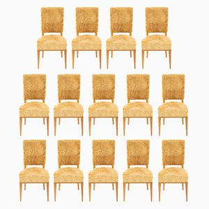 Mid-Century French Maple Dining Chairs, 1940s, Set of 14