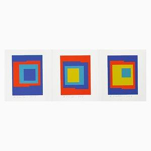Serigrafie di Ib Geertsen, 2007, Set di 3