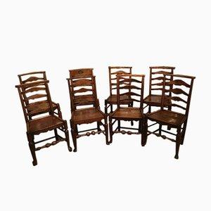 Esszimmerstühle aus Esche & Ulmenholz, 1840er, 8er Set