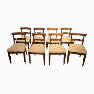 Regency Esszimmerstühle aus Palisander, 1820er, 8er Set