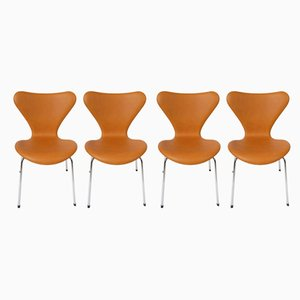 Model 3107 Danish Dining Chairs by Arne Jacobsen for Fritz Hansen, 1950s, Set of 4