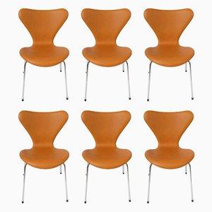 Dänische Modell 3107 Esszimmerstühle von Arne Jacobsen für Fritz Hansen, 1950er, 6er Set