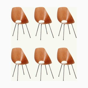 Medea Chairs by Vittorio Nobili for Fratelli Tagliabue, 1955, Set of 6