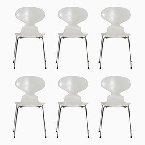 Vintage Ant Stühle von Arne Jacobsen für Fritz Hansen, 1970er, 6er Set