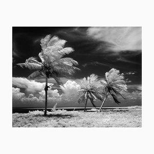 Imprimé Florida Keys par H. Armstrong Roberts-Alamy