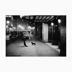 Commissionaire's Dog by Kurt Hutton