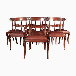 Chaises de Salle à Manger Regency en Acajou et Cuir, 1810s, Set de 8