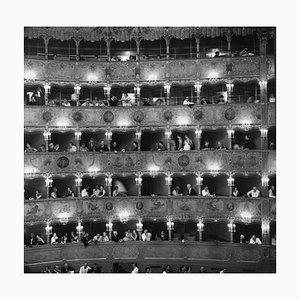 Affiche La Fenice par Erich Auerbach