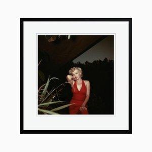 Marilyn Monroe Druck von Baron