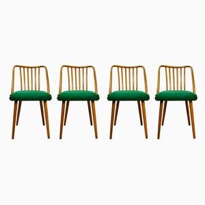 Grüne Esszimmerstühle von Antonín Šuman für TON, 1960er, Set of 4