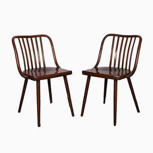 Wooden Dining Chairs by Antonín Šuman for TON, 1960s, Set of 2