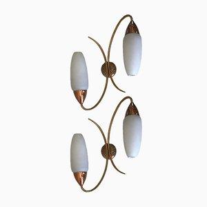 Apliques franceses de latón y vidrio esmerilado, años 60. Juego de 2