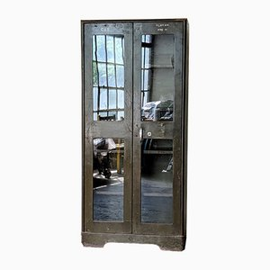Mid-Century Industrie Schrank aus Glas & Eisen, 1960er