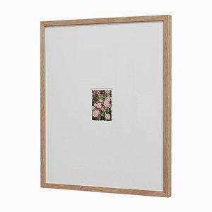 The Rose Garden Nº 14 Druck von David Urbano, 2018