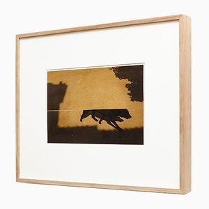Impression Kairos 4020 par Albarran & Cabrera, 2013