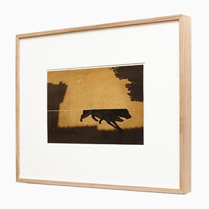 Kairos 4020 Print by Albarran & Cabrera, 2013