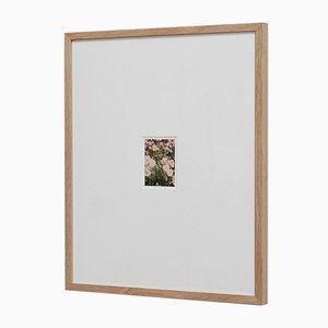 Impresión The Rose Garden nº 33 de David Urbano, 2018