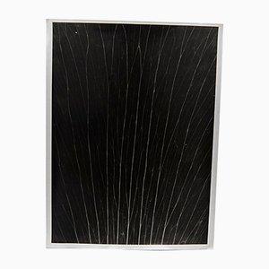 Flora Fotogramm-Druck von Enrico Garzaro, 2015