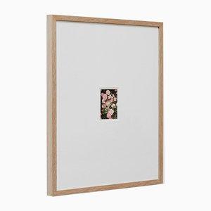 The Rose Garden Nº 34 Druck von David Urbano