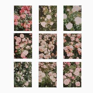 The Rose Garden Drucke von David Urbano, 2018, 9er Set