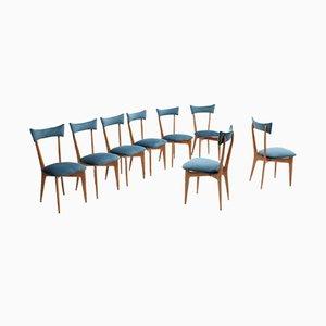 Italienische Esszimmerstühle aus Ahorn von Ico & Luisa Parisi, 1950er, 8er Set