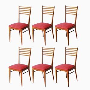 Französische Mid-Century Esszimmerstühle aus Buchenholz, 1950er, 6er Set