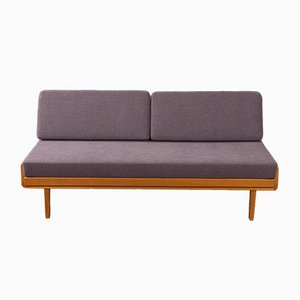 Antimott Cherrywood Daybed from Knoll Inc., 1960s